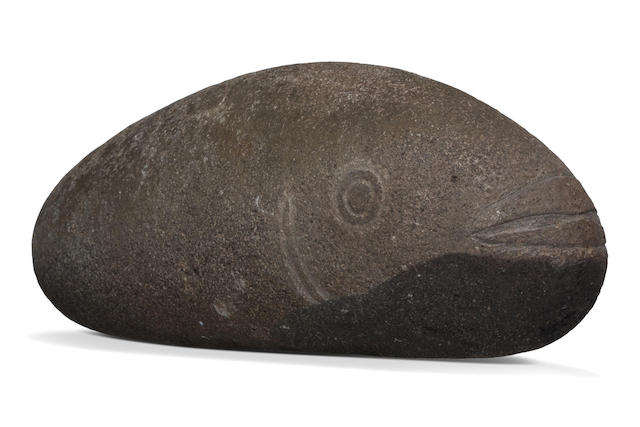 Large and Rare Fish Image, Marquesas Islands