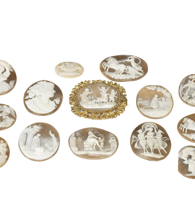 A collection of thirteen unmounted shell cameos