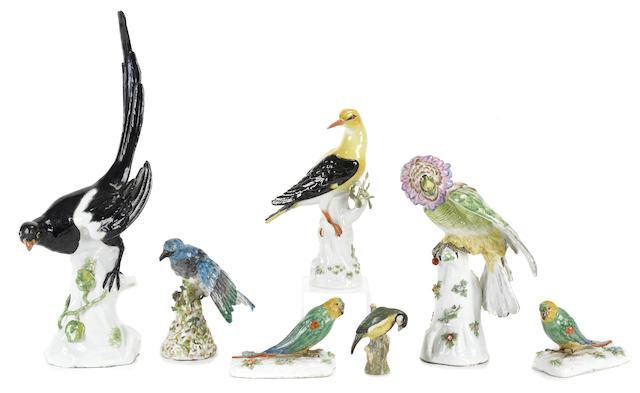 Seven Continental porcelain models of birds