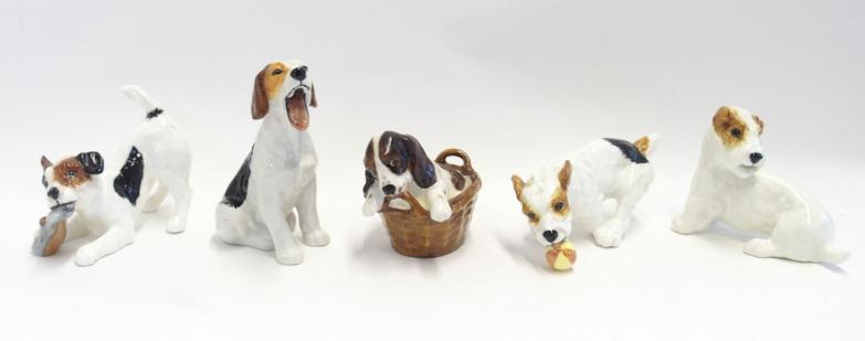 Five Royal Doulton figures of Terriers including HN2506, HN2654, HN1097, HN1099 & HN2586.