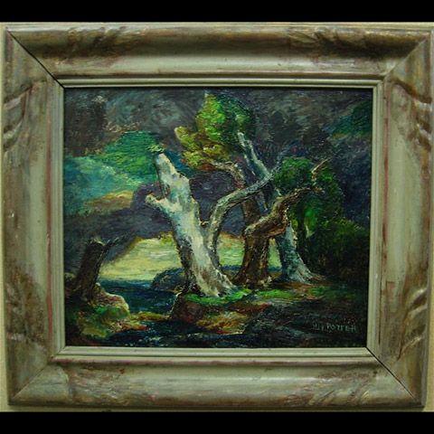 COASTAL VIEW THROUGH TREES