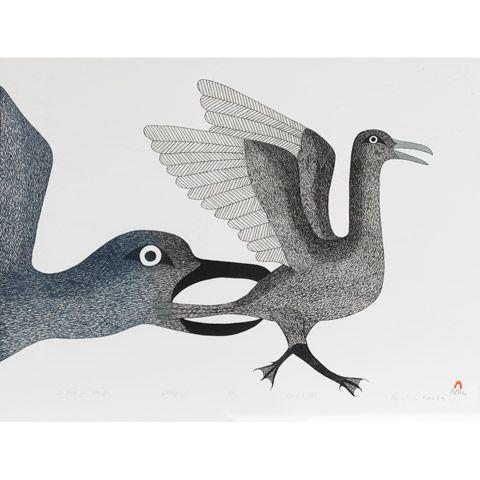 A BIRD IN DANGER