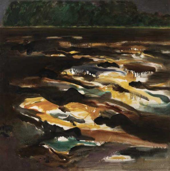 DARK LAKE SURFACE
