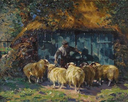 A barnyard scene with sheep