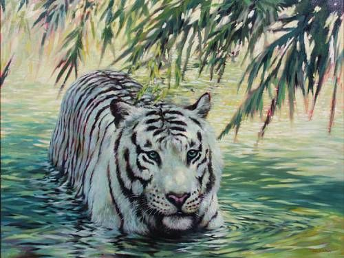 'White Waters (Tiger)'