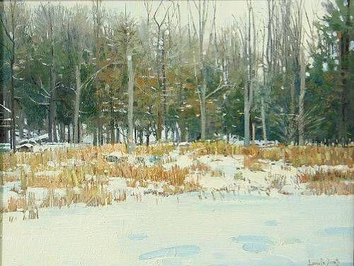 Winter on Beaver Lake