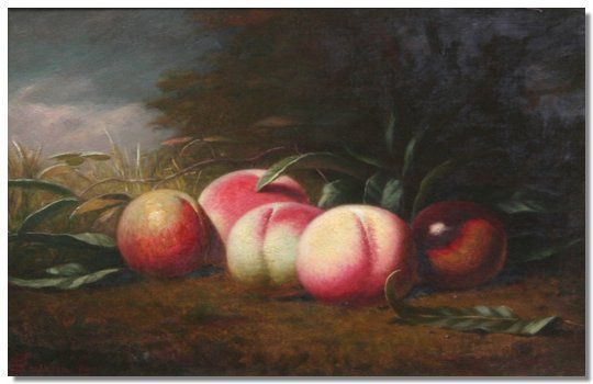 Still life of fruit, on a mossy bank