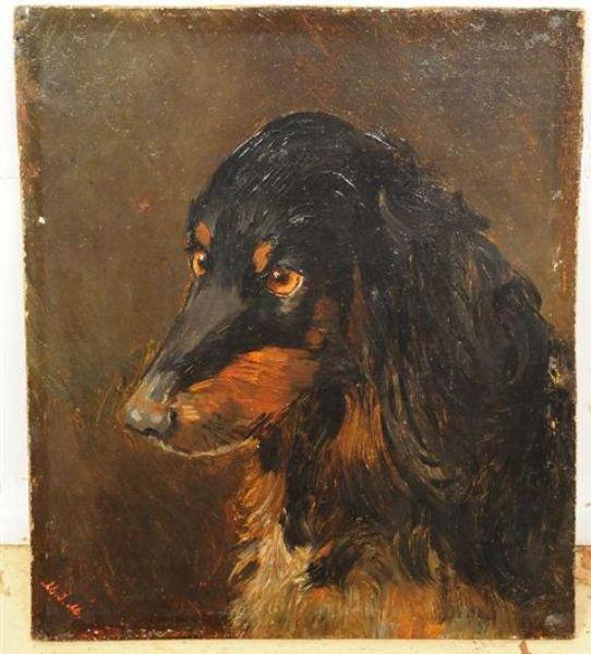 Portrait of a Dachshund