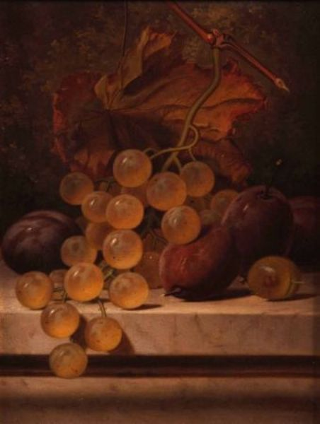 Still Life Study of White Grapes and Plums on a Marble Ledge