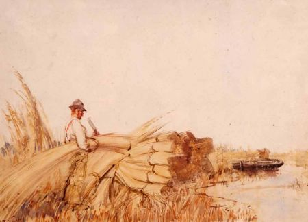 Reed Cutter on The Broads