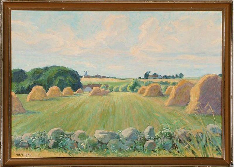 Field scenery