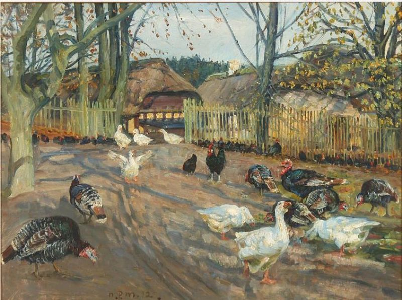 Farm exterior with turkeys and geese