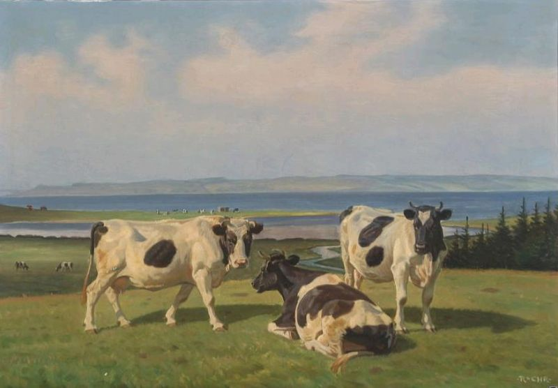 Summer landscape with grassing cows