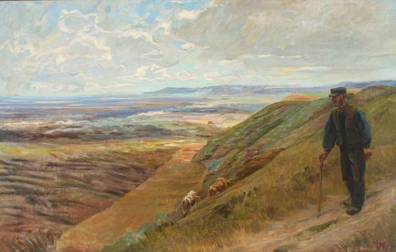 Landscape from Skagen with farmer and cows