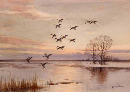 Ducks in Flight over a Lake