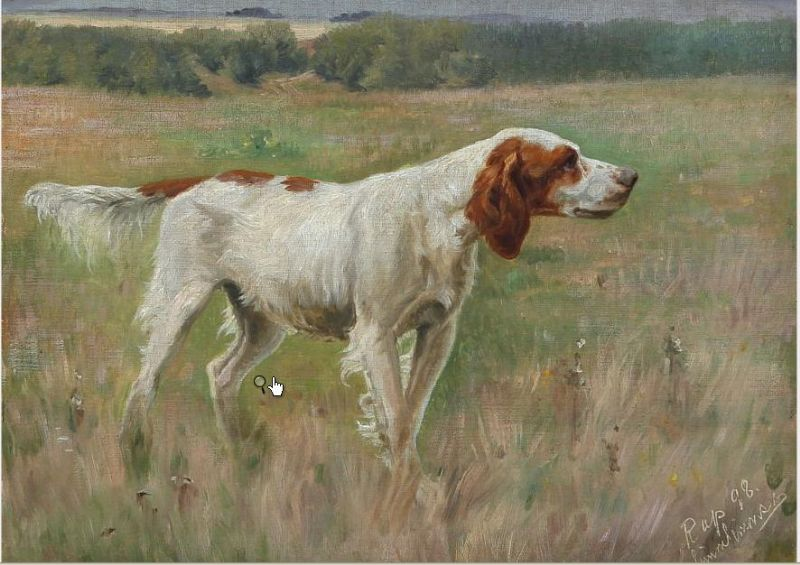 Landscape with a setter who holds position