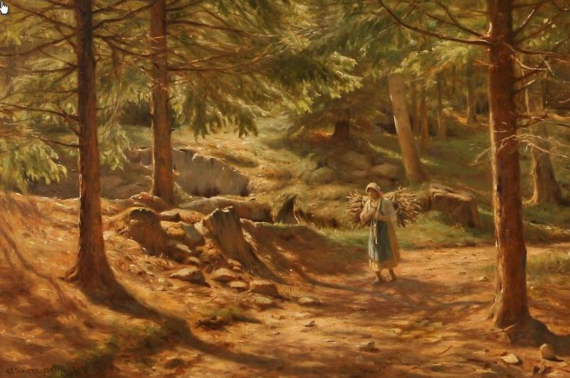 A woman collects firewood in the forest.