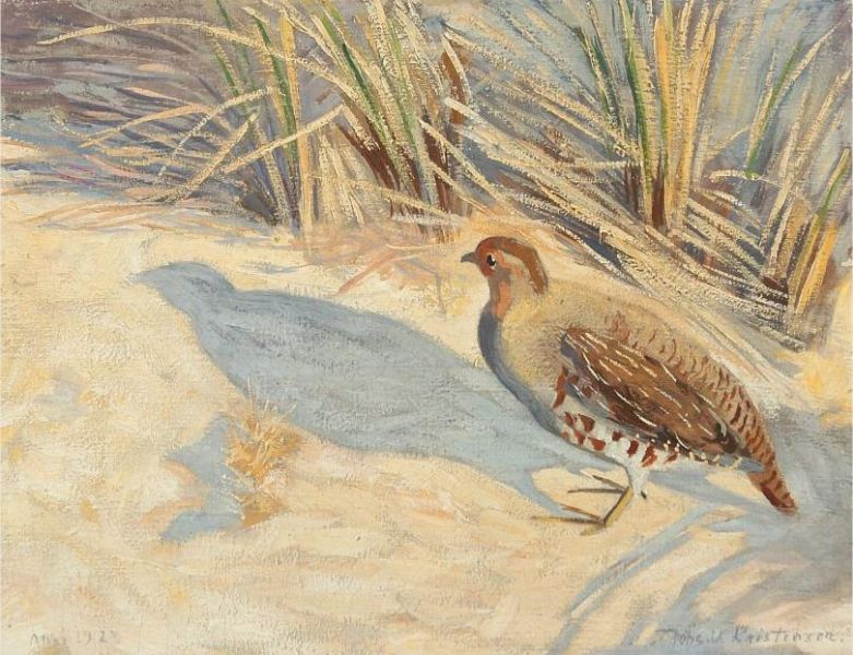 Partridge in a landscape, presumably at Nymindegab