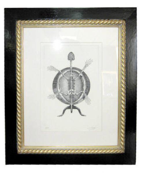Tripod turtle