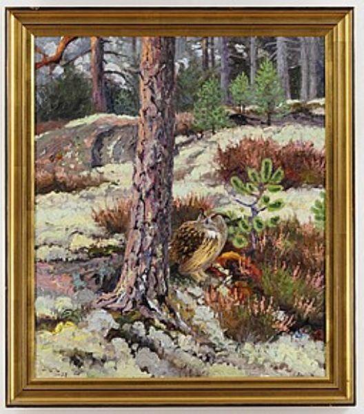 Uggla i skogslandskap