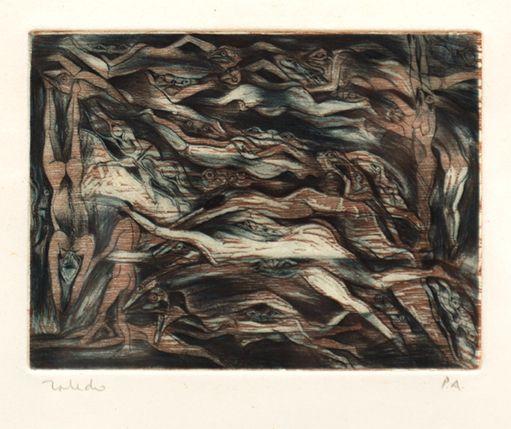 Anfibios desnudos