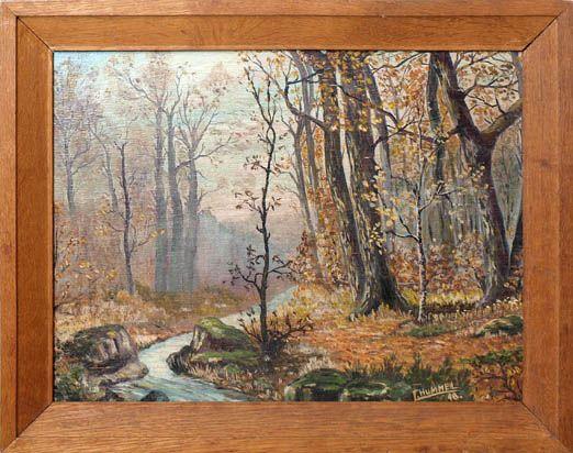 Blick in den Laubwald im Frühling, durch den sich ein Bach schlängelt