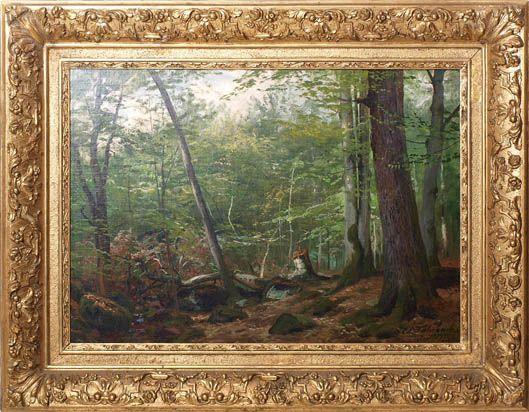 Blick in den lichten Laubwald
